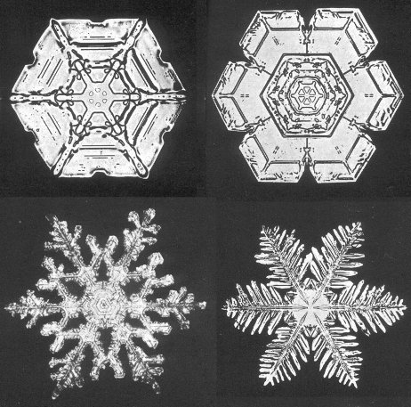 Photo of snowflakes